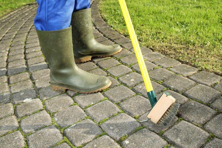 zahradník čistí spáry zámkové dlažby speciálním kartáčem na spáry